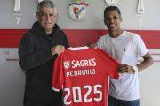 Officiel : Benfica annonce la venue de Pedrinho