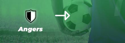 Angers : Stéphane Moulin a peut-être déjà trouvé son nouveau club