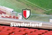 Officiel : Kyril Louis-Dreyfus rachète bien Sunderland